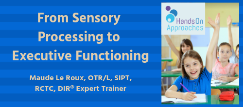from sensory processing to executive functioning